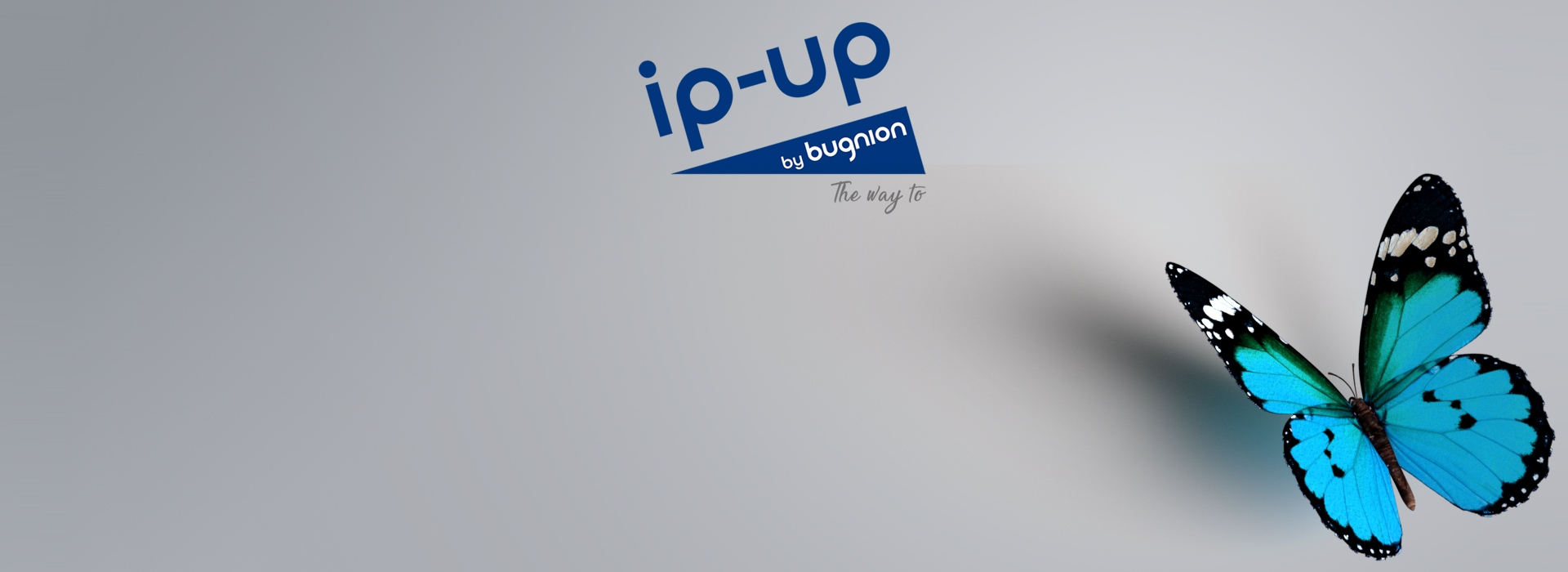 IP-UP by Bugnion